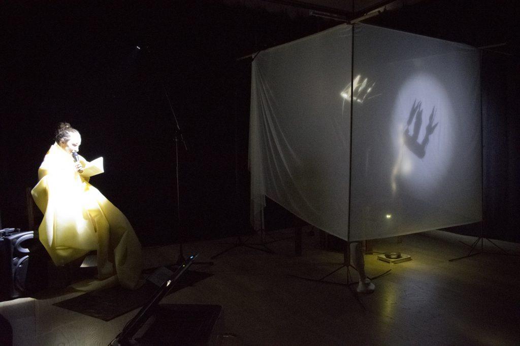 2017 Temná noc - Obrazy pre srnky